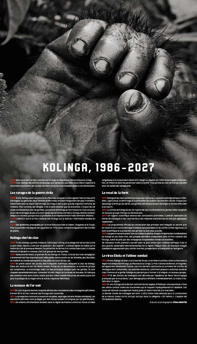 Chronology of Kolinga's life
