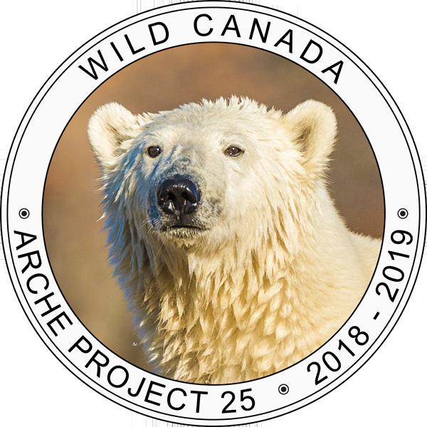 Logo du projet Wild Canada de Charles Cherrier