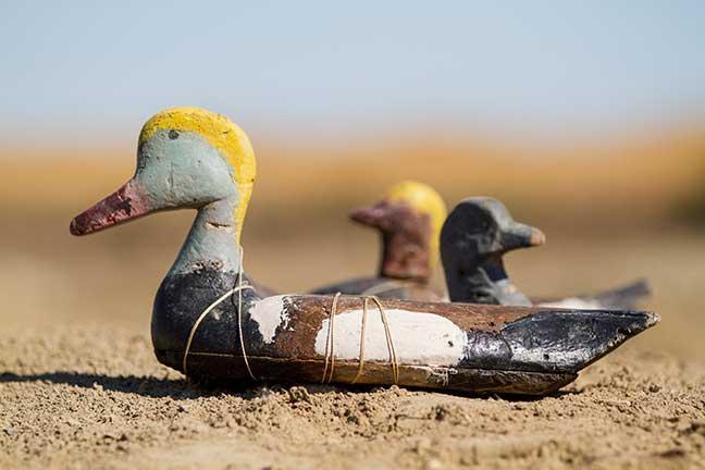 Photographie de Gilles Martin : Leurres abandonnés par des braconniers en mer d'Aral