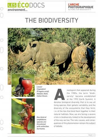 First page of The biodiversity