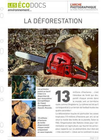 Première page de La déforestation