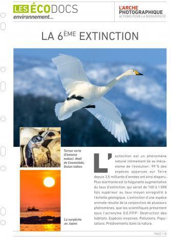 Première page de Fiche écodoc : La 6ème extinction
