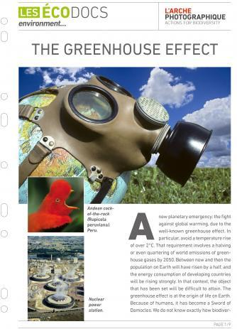 First page of The greenhouse effect
